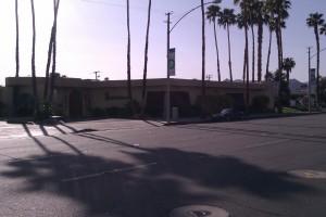 Wangs in the Desert Palm Springs