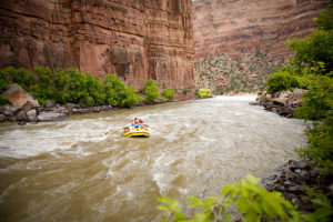 Rafting Colorado