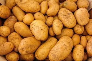 Is a potato only diet a good thing to do